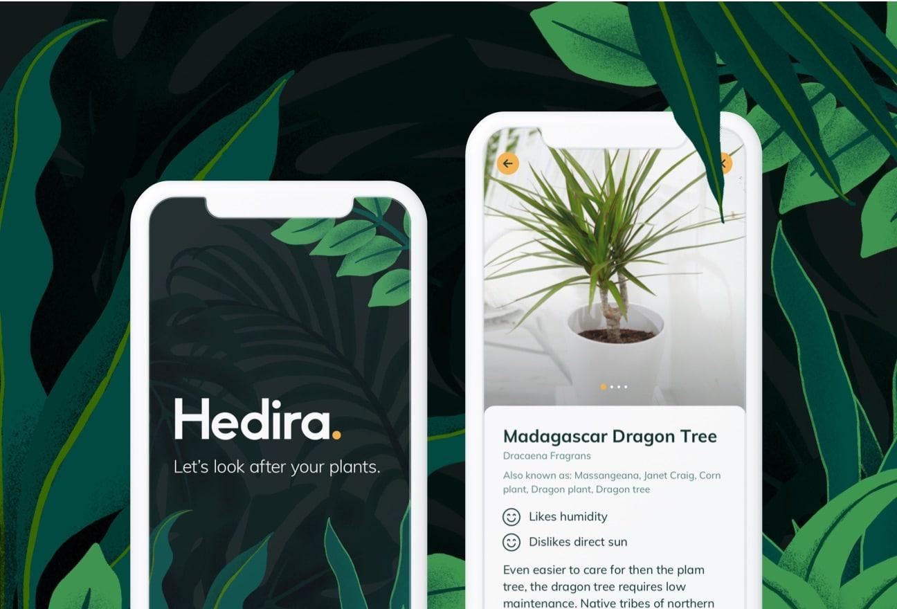 hedira-thumb